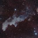 Witch Head Nebula (IC 2118),                                Fred Boucher