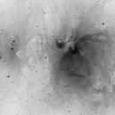 M42 Negative,                                Rhett Herring