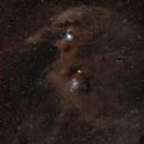 "Molekular Cloud in Chamaeleon ""Dicky Bird"" - CED110, CED111,                                Rolf Dietrich"