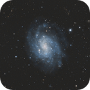 NGC 300,                                Guillermo Spiers