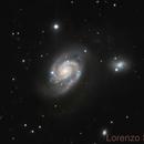NGC 3893,                                Lorenzo Siciliano