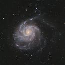 Pinwheel Galaxy (M101),                                Fred Boucher