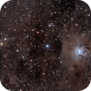 NGC 7023,                                Craig Prost
