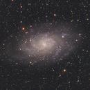 Messier 33,                                dputz