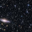 NGC 7331 &  Stephan's Quintet,                                Enrique Arce