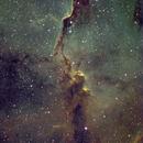 Elephant Trunk Nebula,                                Chris Duffey