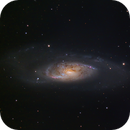 M106 and NGC4248,                                Shannon Calvert