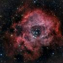 NGC 2237 Rosette Nebula,                                  Carsten Eckhardt