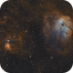 A Cosmic Zoo: Tadpoles, Spider and Fly,                                  Victor Van Puyenb...