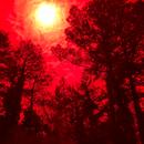 The Sun 720 nm,                                Chris Price