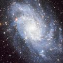 M33 - The Triangulum (Pinwheel) Galaxy,                                David Payne