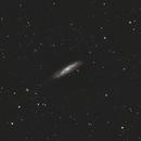 M 98,                                Robin Clark - EAA imager