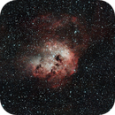 IC 410 - The Tadpole Nebula,                                D. Jung