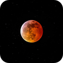Blood Moon 2019,                                AstrophotographywithDan