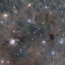 NGC 1333 wide field,                                Steed Yu