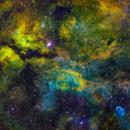 Sadr Region, Crescent Nebula SHO,                                tjm8874