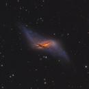NGC 660,                                Tolga