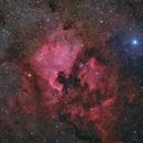 North America Nebula - Deep Sky West Remote Observatory,                    Deep Sky West (Ll...