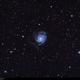 M101 and surroundings,                                Enol Matilla