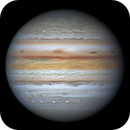 The first B&W image of the Jupiter in 2021,                                周志伟