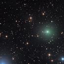 cometa 64P,                                  Rolando Ligustri