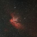 Wizard Nebula - NGC 7380,                                douglupardus