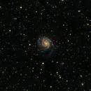 Revisiting M101,                                Craine