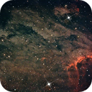 Pelican Nebula,                                Steve Lenti