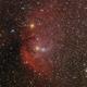 Sh2-101 : The Tulip Nebula,                                lowenthalm