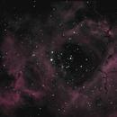 Rosette Nebula,                                mbucky