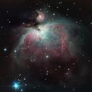 Orion Nebula,                                allanv28
