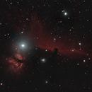 Horsehead & Flame Nebulas,                                Mark Germani