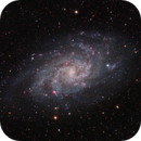 M33,                                Marc Ricard