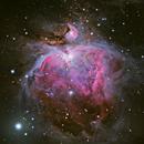 M42 - The Orion Nebula,                                Steven E Labkoff