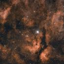 γ Cygn & IC1318,                                  Shenyan Zhang