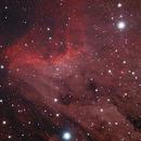 NGC5070 Pelican Nebula,                                Armin Unterwandling