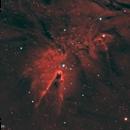 Cone Nebula #5 (Bicolor),                                Molly Wakeling