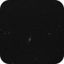 [Gal] M106 unguided @Calern,                                Raypulsif