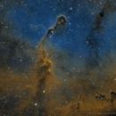 IC 1396 - Elephant Trunk,                                Brad