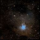 NGC7023 Iris Nebula,                                rayp