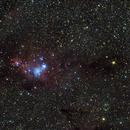 Christmas Tree Nebula,                                Eric Walden