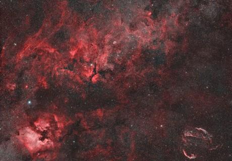 Cygnus widefield in narrowband,                                alexbb