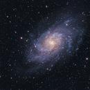 M33 The Triangulam Galaxy,                                Wes Higgins