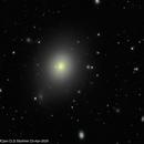 M49,                                Wulf