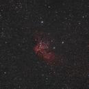 NGC 7380 - Wizard Nebula,                                Fabian Rodriguez...