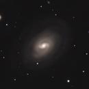 NGC 1371,                                Gary Imm