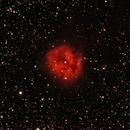 Cocoon Nebula,                                rdmarcot