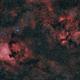Cygnus Region - Wide Field,                                Robert Eder