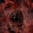 Rosette Nebula,                                Silentjurg