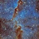 IC1396 - Elephant Trunk Nebula in 2-channel narrowband,                                TomBramwell